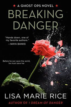 Breaking Danger by Lisa Marie Rice