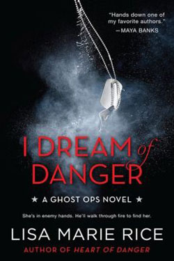 I Dream of Danger by Lisa Marie Rice